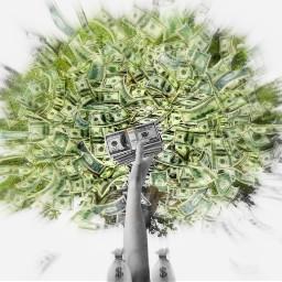 moneytree moneyheist moneymaker freetoedit