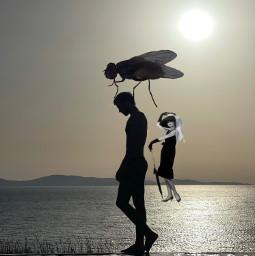 freetoedit ircsunsetsilhouette sunsetsilhouette