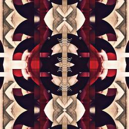 freetoedit mirrormaniamonday art design style mirrorart distortedimage photomanipulaton editedstepbystep symmetryart abstracartwork artisticexpression madewithpicsarttools myphotomyedit myart mystyle