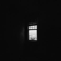 dark darkness cat hidden window madewithpicsart picsartedit freetoedit